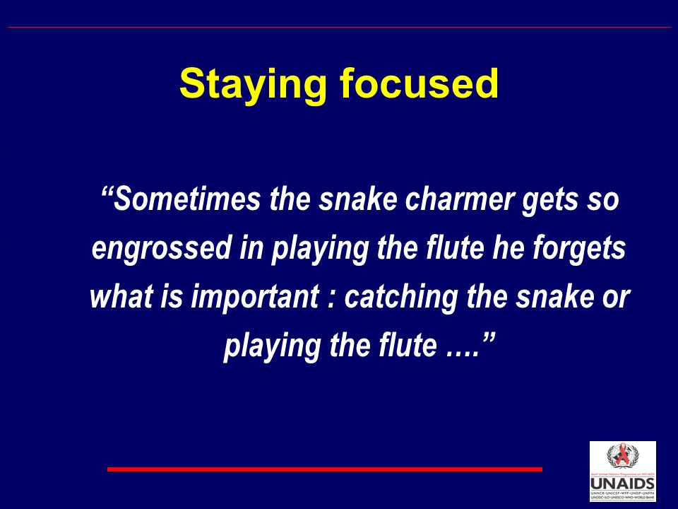 Staying focused Sometimes the snake charmer gets so engrossed in playing the flute he forgets what is important : catching the snake or playing the flute ….