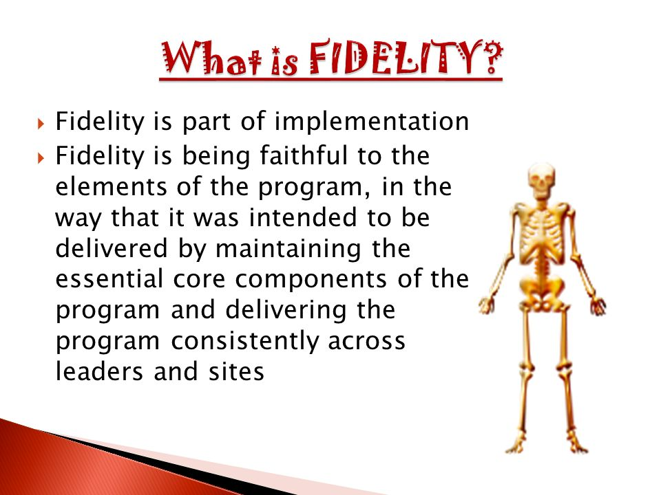 Fidelity is part of implementation Fidelity is being faithful to the elements of the program, in the way that it was intended to be delivered by maintaining the essential core components of the program and delivering the program consistently across leaders and sites