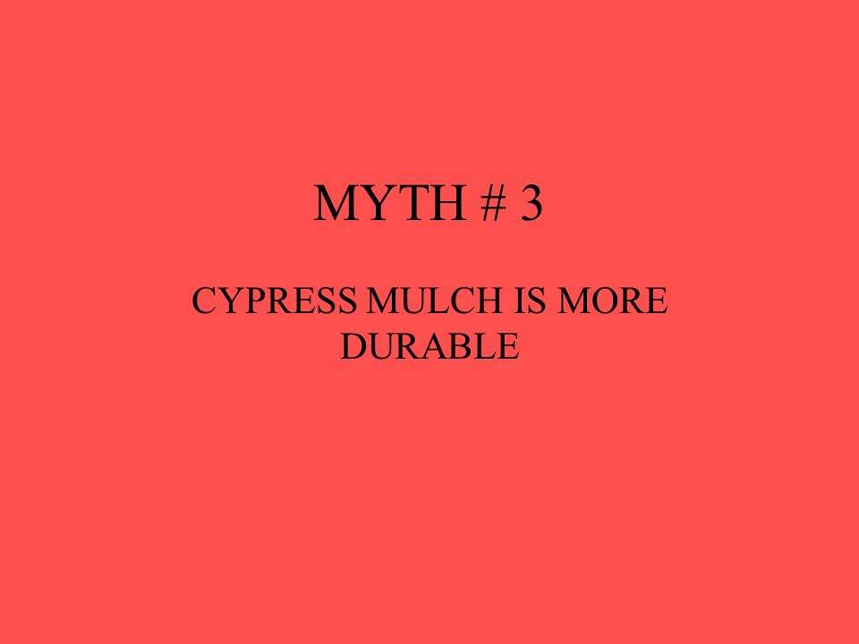 MYTH # 3 CYPRESS MULCH IS MORE DURABLE