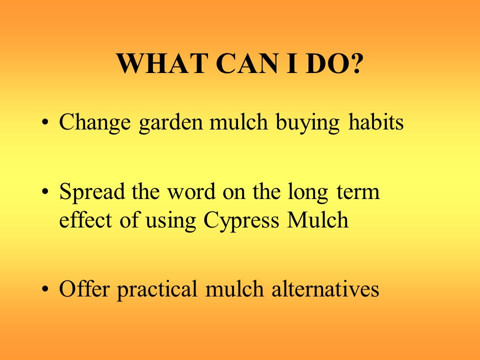 WHAT CAN I DO? Change garden mulch buying habits Spread the word on the long term effect of using Cypress Mulch Offer practical mulch alternatives