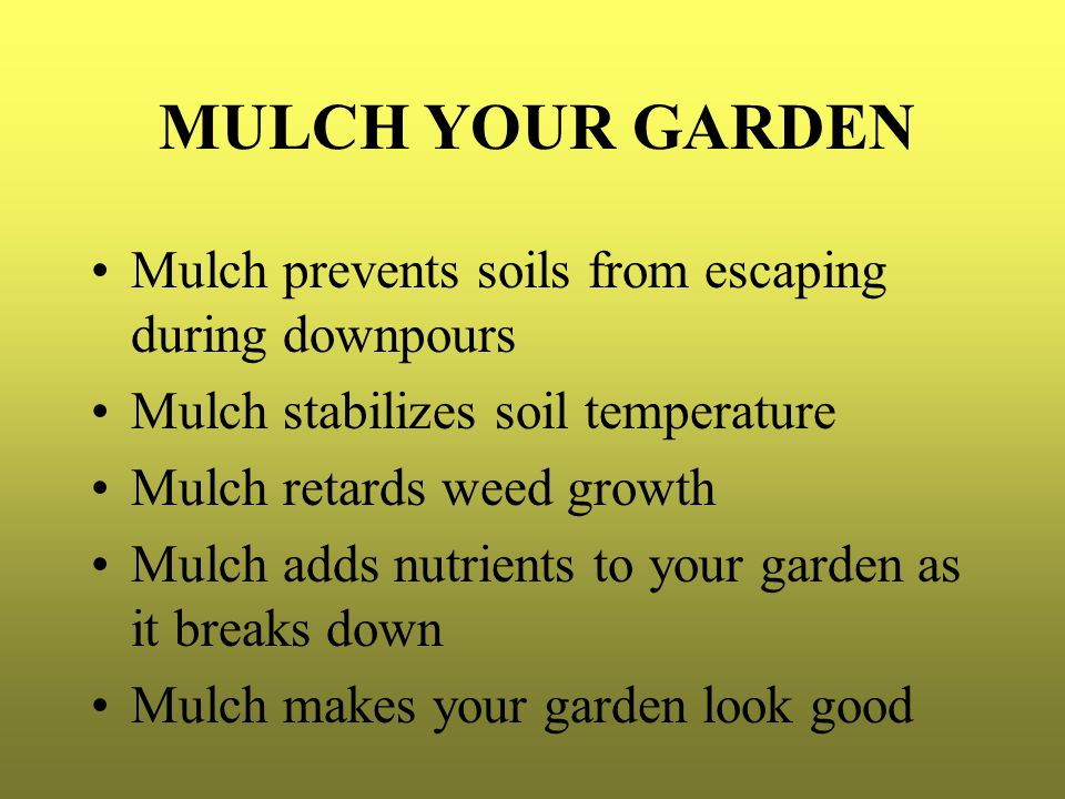 MULCH YOUR GARDEN Mulch prevents soils from escaping during downpours Mulch stabilizes soil temperature Mulch retards weed growth Mulch adds nutrients