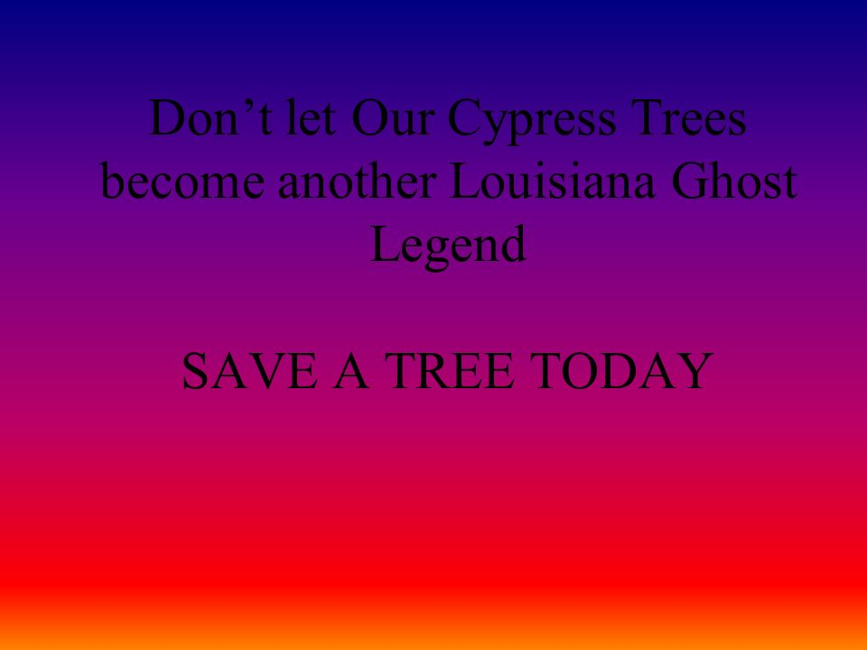 Dont let Our Cypress Trees become another Louisiana Ghost Legend SAVE A TREE TODAY