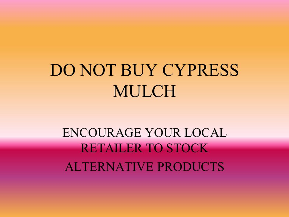 DO NOT BUY CYPRESS MULCH ENCOURAGE YOUR LOCAL RETAILER TO STOCK ALTERNATIVE PRODUCTS