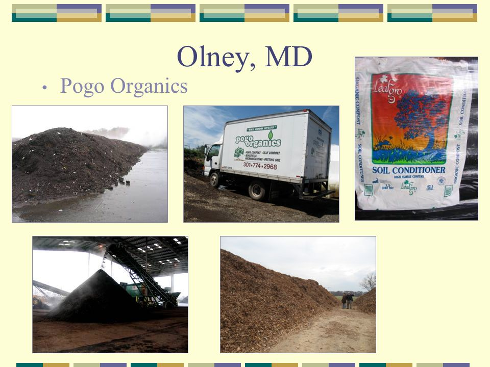 Olney, MD Pogo Organics