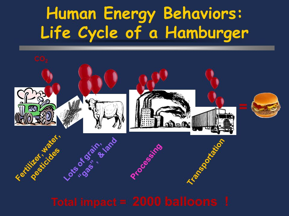 Human Energy Behaviors: Life Cycle of a Hamburger Processing CO 2 Transportation Fertilizer, water, pesticides Lots of grain, gas, & land = Total impact = 2000 balloons !