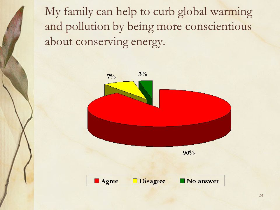 24 My family can help to curb global warming and pollution by being more conscientious about conserving energy.