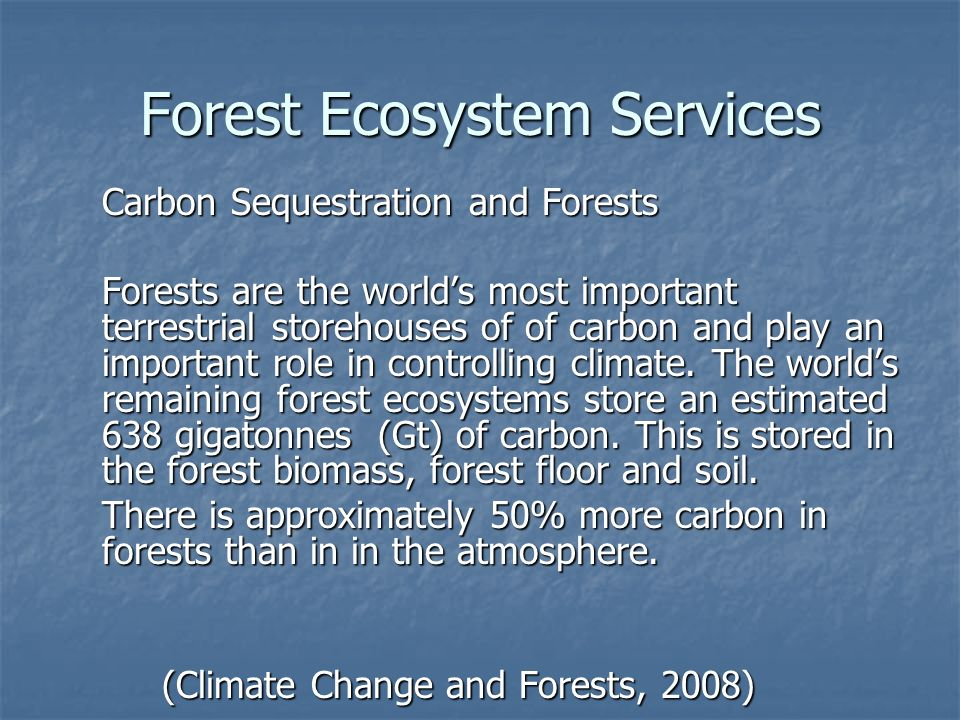 Forest Ecosystem Services Carbon Sequestration and Forests Forests are the worlds most important terrestrial storehouses of of carbon and play an important role in controlling climate.