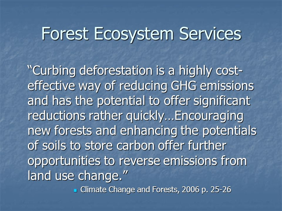 Forest Ecosystem Services Curbing deforestation is a highly cost- effective way of reducing GHG emissions and has the potential to offer significant reductions rather quickly…Encouraging new forests and enhancing the potentials of soils to store carbon offer further opportunities to reverse emissions from land use change.