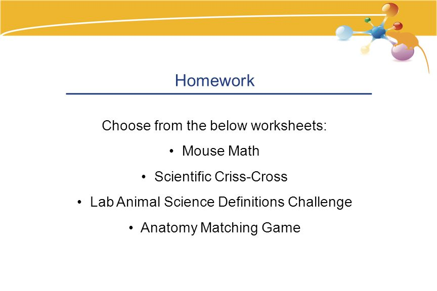 Homework Choose from the below worksheets: Mouse Math Scientific Criss-Cross Lab Animal Science Definitions Challenge Anatomy Matching Game