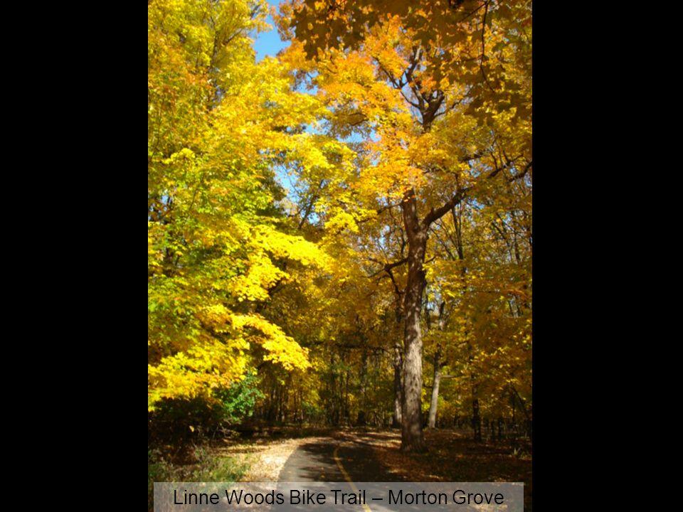 Linne Woods Bike Trail – Morton Grove