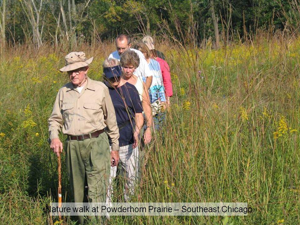 Nature walk at Powderhorn Prairie – Southeast Chicago