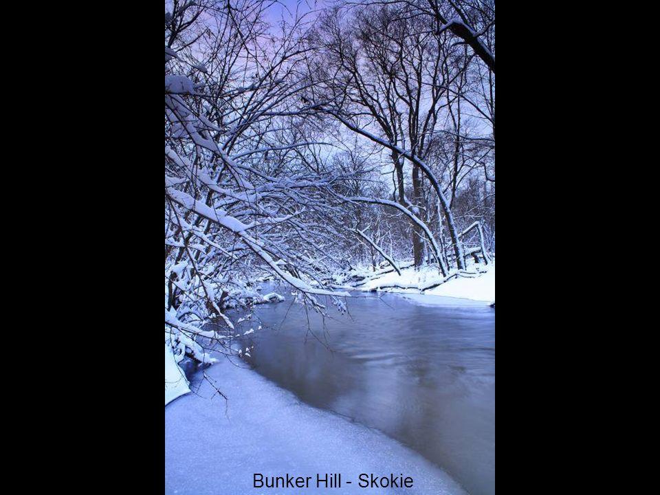 Bunker Hill - Skokie