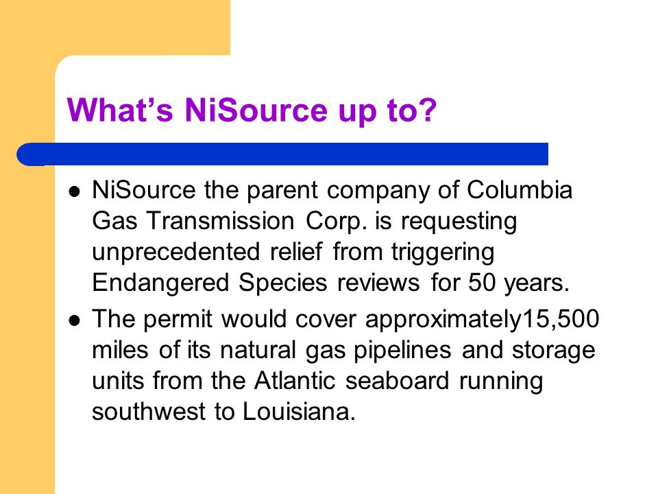 Whats NiSource up to. NiSource the parent company of Columbia Gas Transmission Corp.