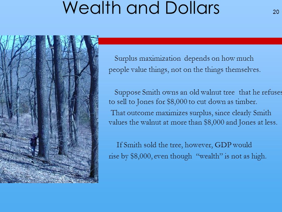 Wealth and Dollars Surplus maximization depends on how much people value things, not on the things themselves.