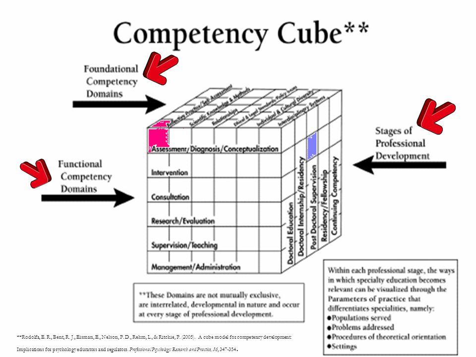 **Rodolfa, E. R., Bent, R. J., Eisman, E., Nelson, P. D., Rehm, L., & Ritchie, P. (2005). A cube model for competency development: Implications for ps