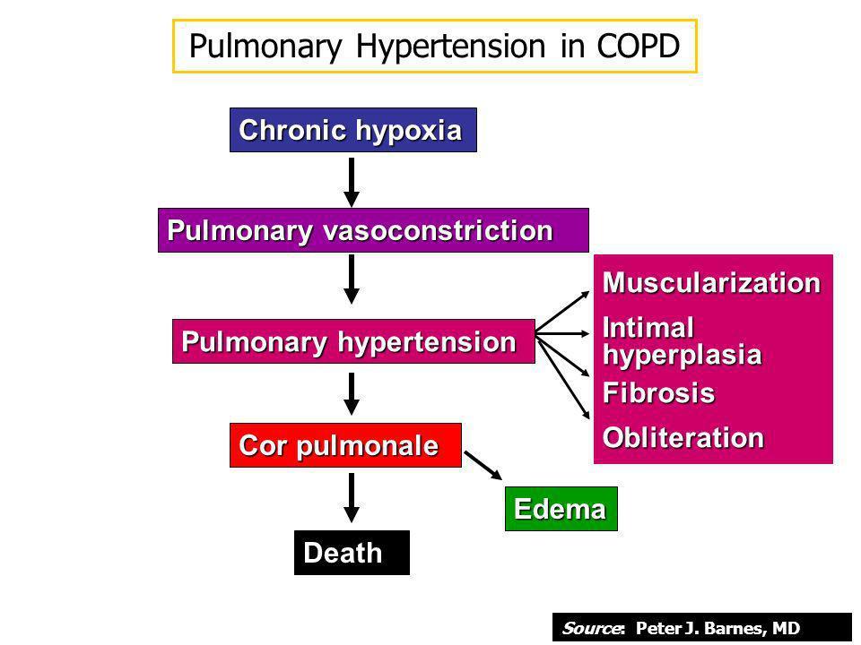 Chronic hypoxia Pulmonary vasoconstriction MuscularizationIntimalhyperplasiaFibrosisObliteration Pulmonary hypertension Cor pulmonale Death Edema Pulm