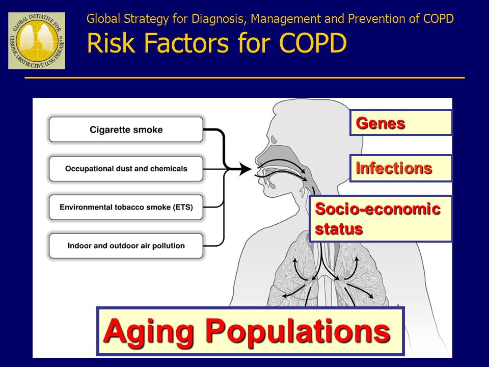 Global Strategy for Diagnosis, Management and Prevention of COPD Risk Factors for COPD Genes Infections Socio-economic status Aging Populations