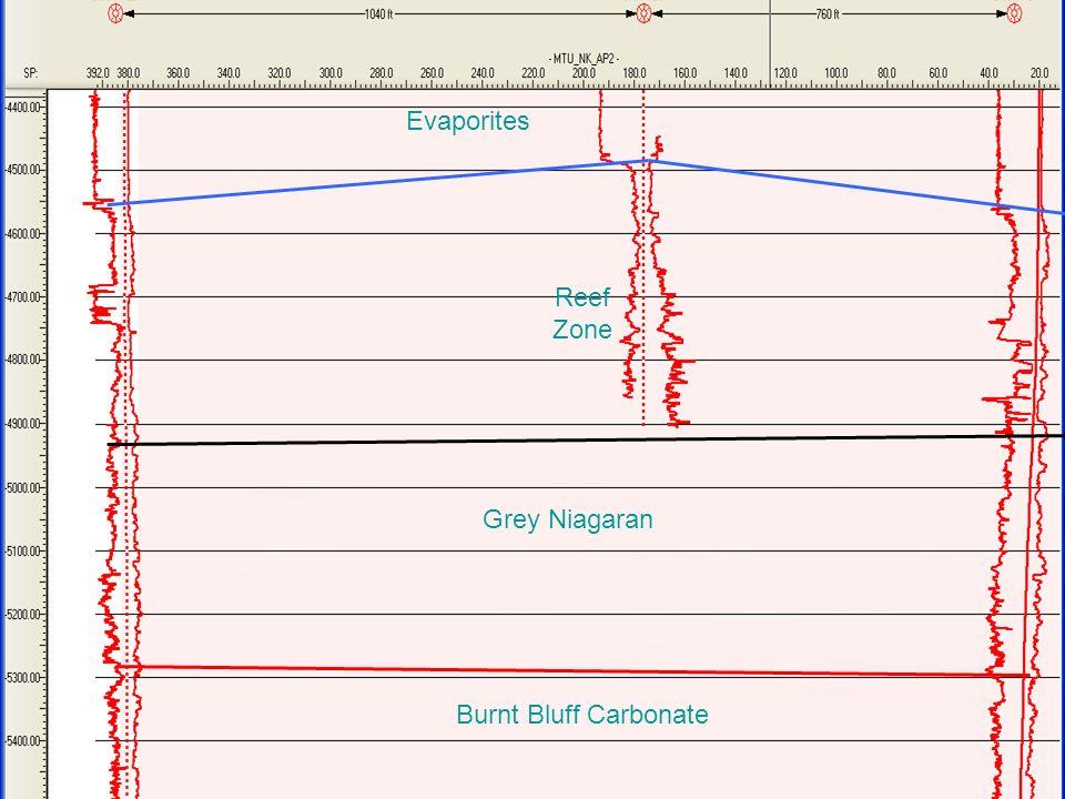 Burnt Bluff Carbonate Grey Niagaran Evaporites Reef Zone
