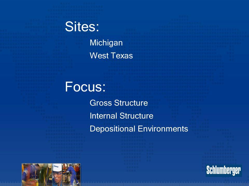 Sites: Michigan West Texas Focus: Gross Structure Internal Structure Depositional Environments
