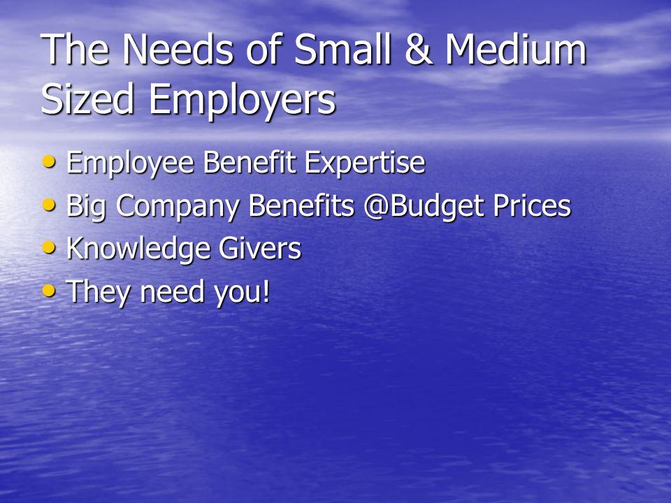 The Needs of Small & Medium Sized Employers Employee Benefit Expertise Employee Benefit Expertise Big Company Prices Big Company Prices Knowledge Givers Knowledge Givers They need you.