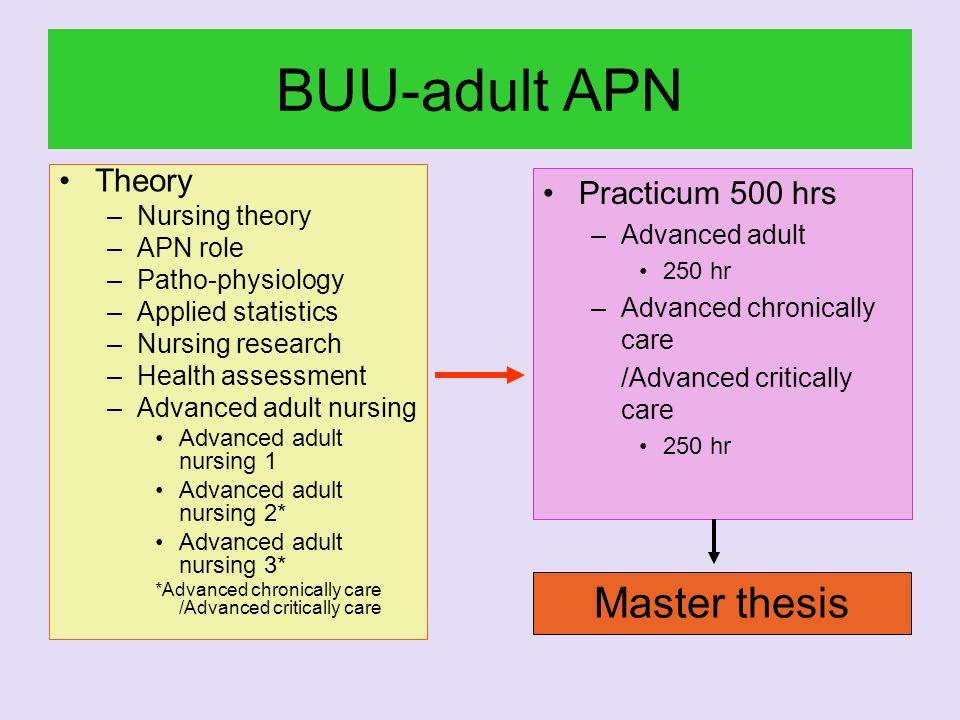 BUU-adult APN Theory –Nursing theory –APN role –Patho-physiology –Applied statistics –Nursing research –Health assessment –Advanced adult nursing Adva