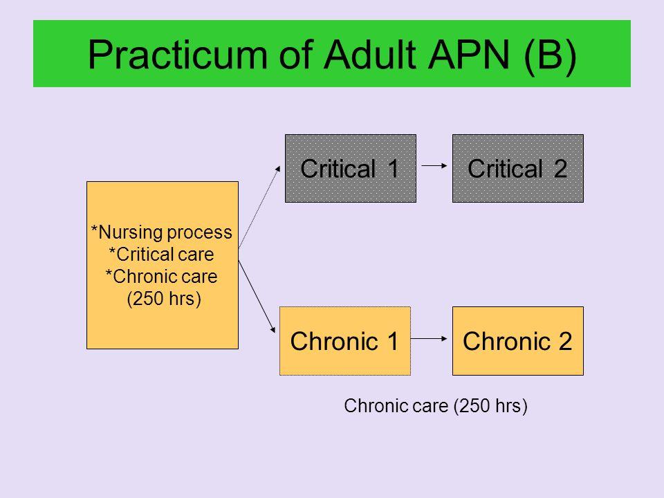 Practicum of Adult APN (B) *Nursing process *Critical care *Chronic care (250 hrs) Chronic 1Chronic 2 Critical 1Critical 2 Chronic care (250 hrs)
