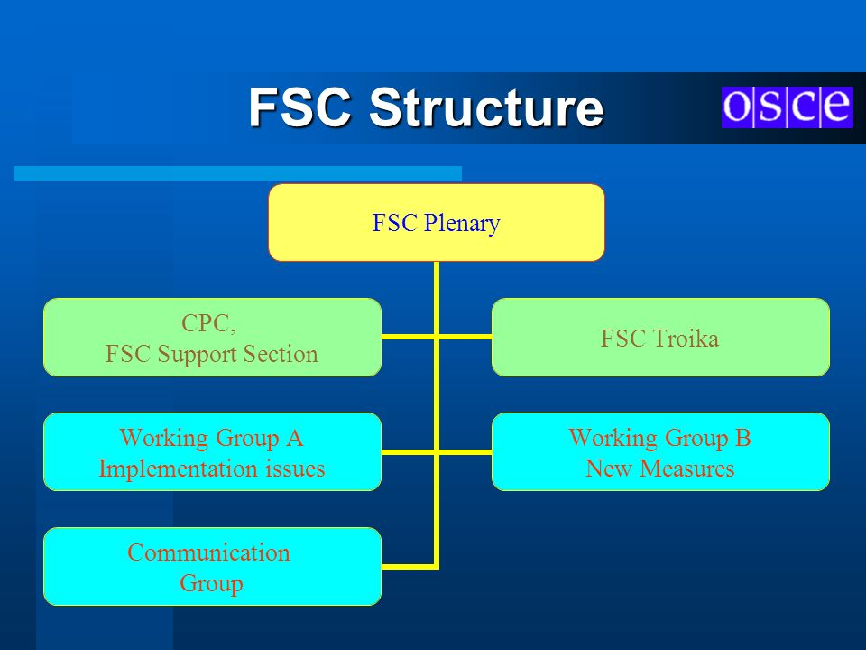 FSC Structure FSC Plenary Working Group A Implementation issues Working Group B New Measures Communication Group CPC, FSC Support Section FSC Troika