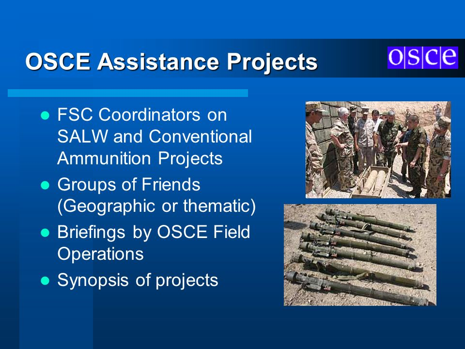 OSCE Assistance Projects FSC Coordinators on SALW and Conventional Ammunition Projects Groups of Friends (Geographic or thematic) Briefings by OSCE Fi