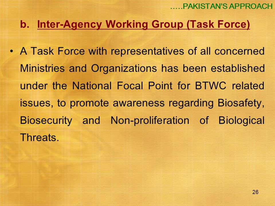26 b.Inter-Agency Working Group (Task Force) A Task Force with representatives of all concerned Ministries and Organizations has been established unde