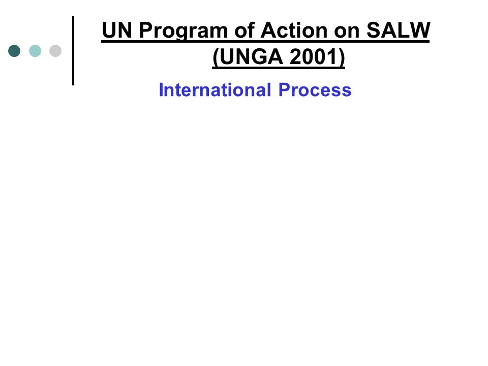 UN Program of Action on SALW (UNGA 2001) International Process
