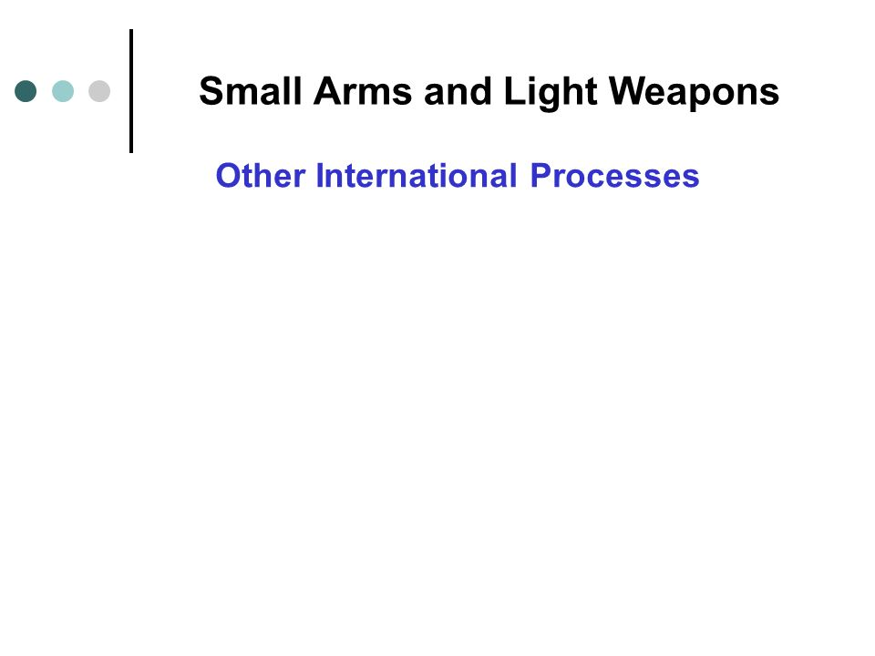 Small Arms and Light Weapons Other International Processes