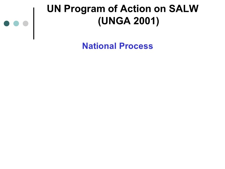 UN Program of Action on SALW (UNGA 2001) National Process