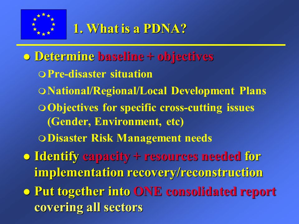 1. What is a PDNA.