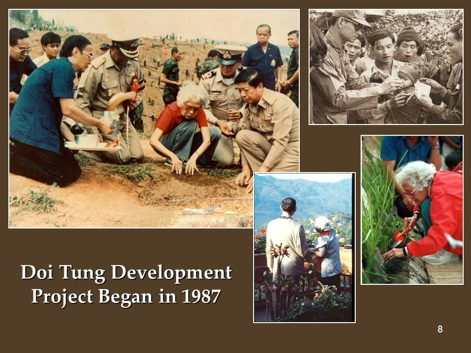 9 Solving the problems of: HEALTHLIVELIHOODEDUCATION Doi Tung Holistic and Integrated Approach