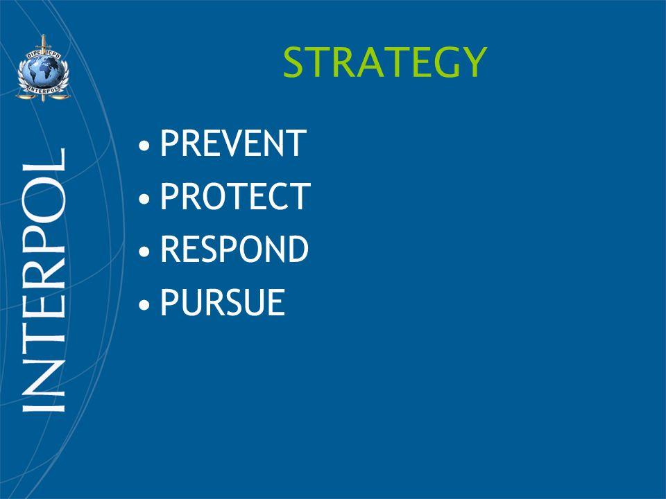STRATEGY PREVENT PROTECT RESPOND PURSUE