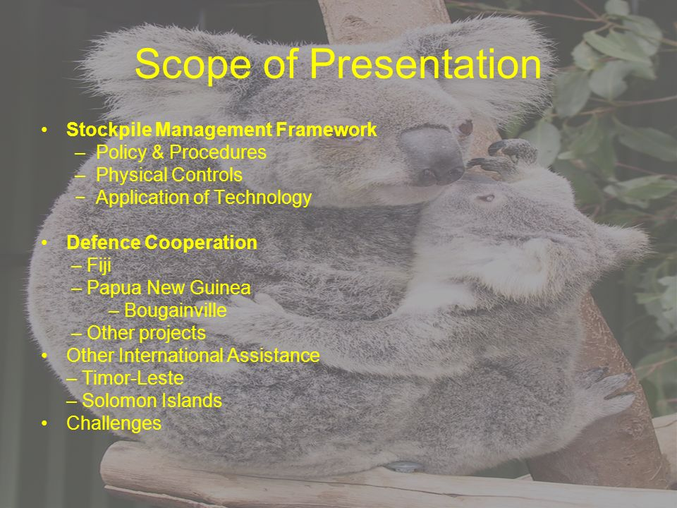 Scope of Presentation Stockpile Management Framework –Policy & Procedures –Physical Controls Application of Technology Defence Cooperation – Fiji – Papua New Guinea – Bougainville – Other projects Other International Assistance – Timor-Leste – Solomon Islands Challenges