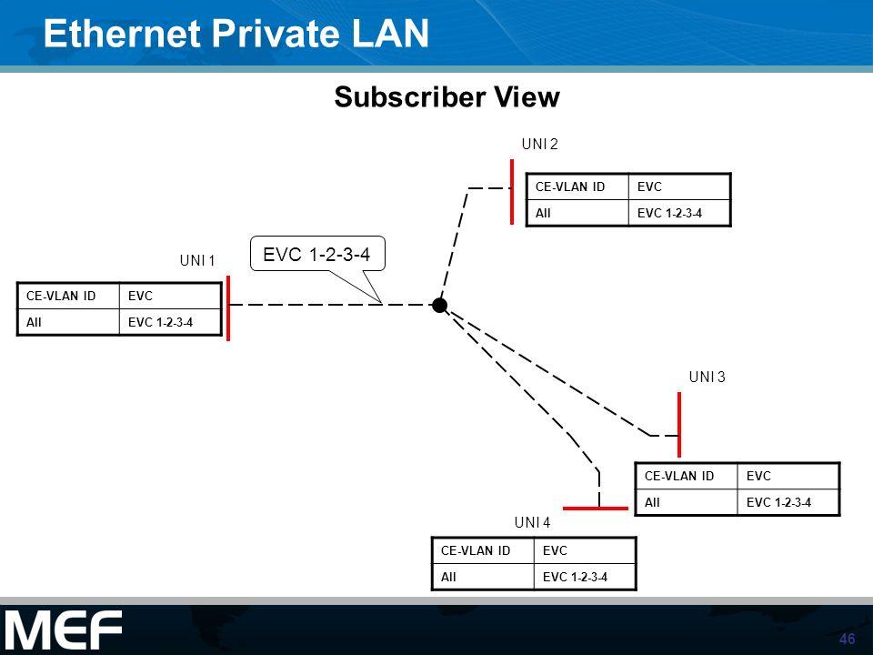 46 Ethernet Private LAN UNI 1 UNI 2 UNI 3 UNI 4 EVC 1-2-3-4 CE-VLAN IDEVC AllEVC 1-2-3-4 CE-VLAN IDEVC AllEVC 1-2-3-4 CE-VLAN IDEVC AllEVC 1-2-3-4 CE-
