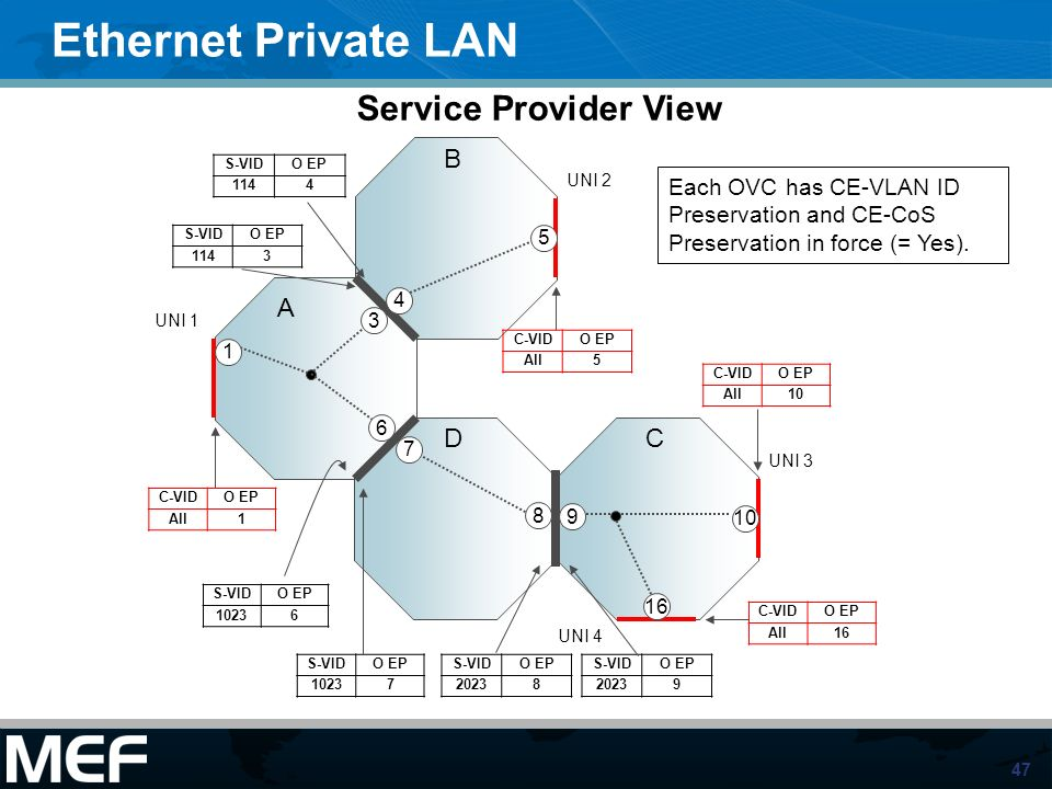 47 Ethernet Private LAN A B UNI 1 UNI 2 UNI 3 16 UNI 4 S-VIDO EP 1144 C-VIDO EP All5 S-VIDO EP 10237 S-VIDO EP 20238 S-VIDO EP 20239 8 9 Each OVC has