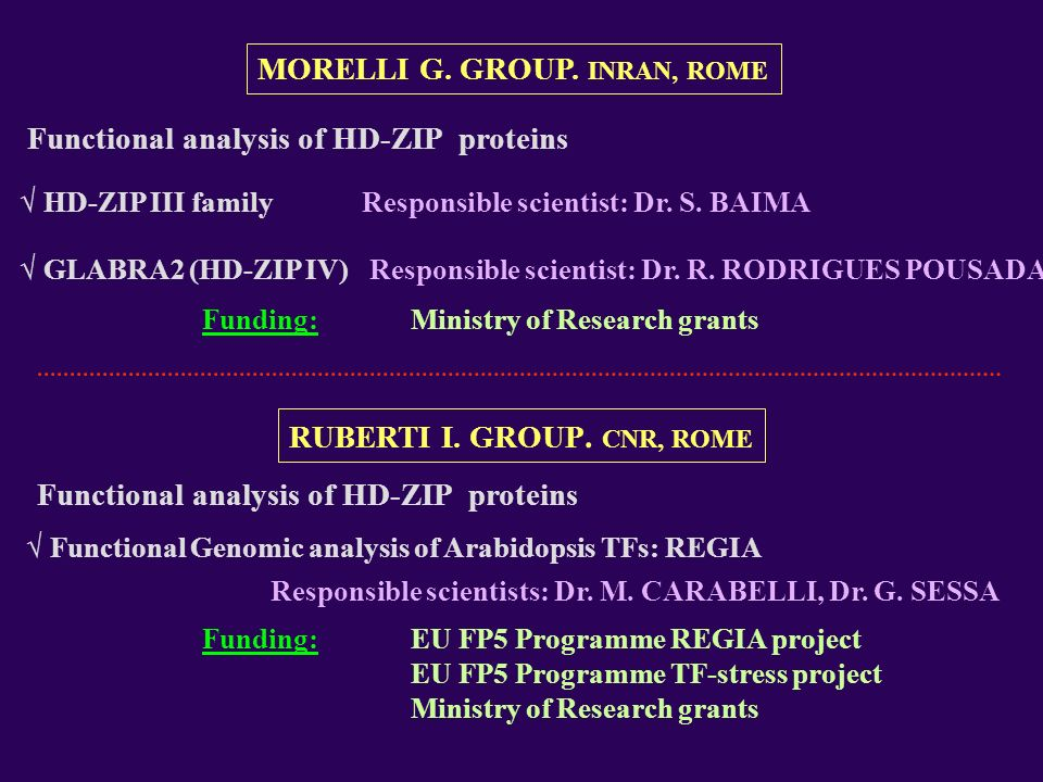 MORELLI G. GROUP. INRAN, ROME RUBERTI I. GROUP. CNR, ROME Funding:EU FP5 Programme REGIA project EU FP5 Programme TF-stress project Ministry of Resear