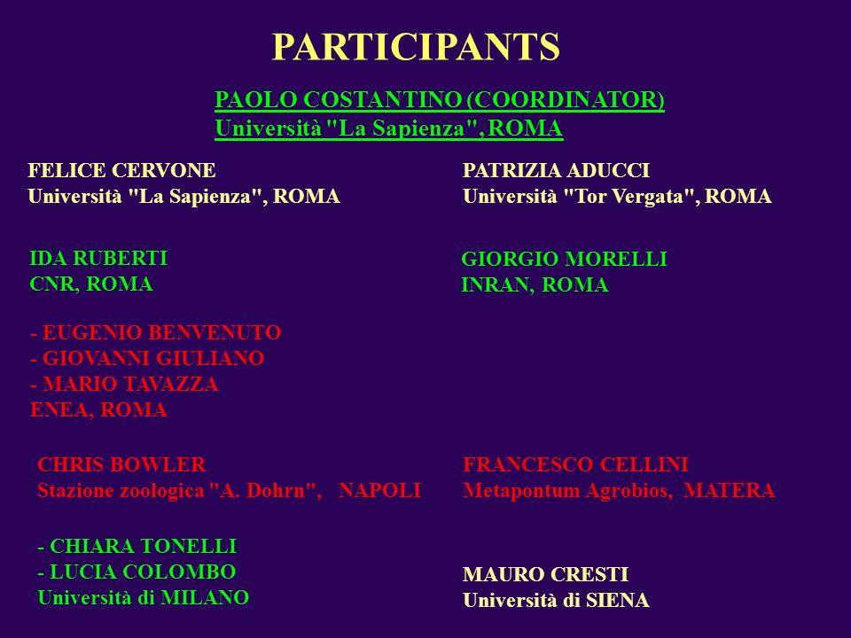 PARTICIPANTS PAOLO COSTANTINO (COORDINATOR) Università La Sapienza , ROMA CHRIS BOWLER Stazione zoologica A.