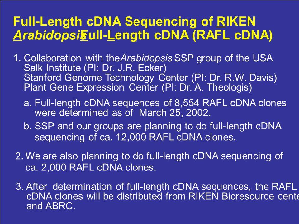 Full-Length cDNA Sequencing of RIKEN Arabidopsis Full-Length cDNA (RAFL cDNA) 1.