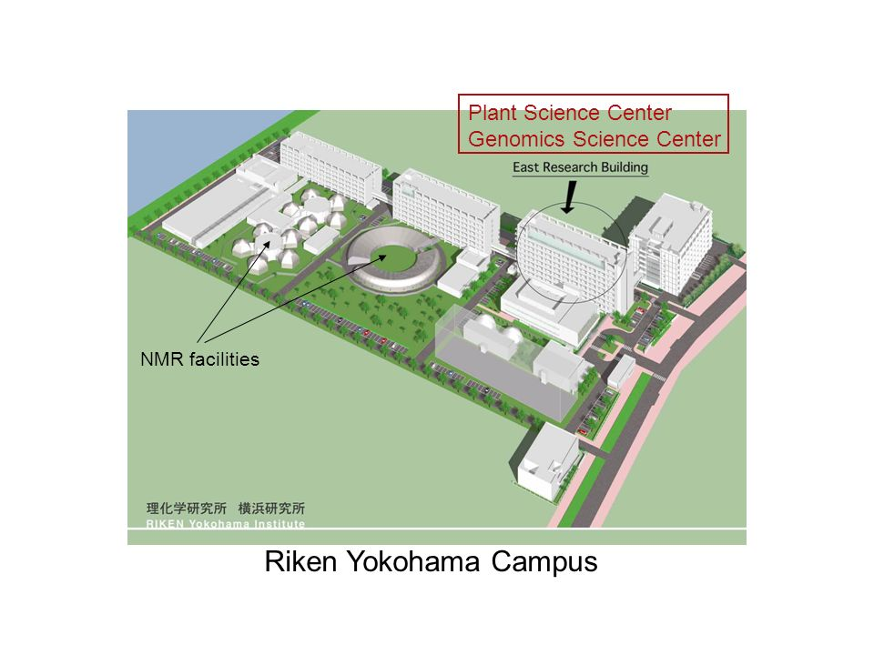 Riken Yokohama Campus NMR facilities Plant Science Center Genomics Science Center