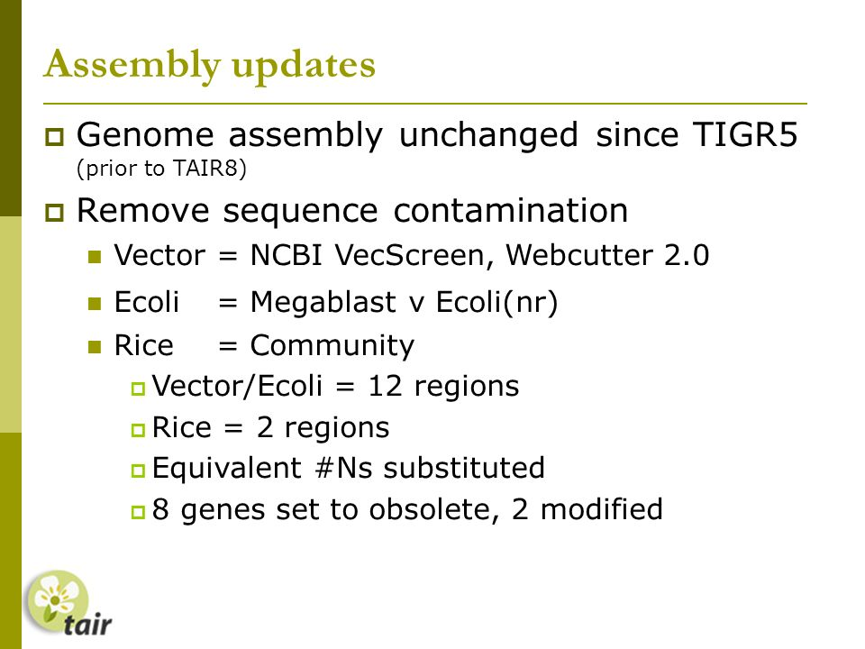 Assembly updates Genome assembly unchanged since TIGR5 (prior to TAIR8) Remove sequence contamination Vector= NCBI VecScreen, Webcutter 2.0 Ecoli = Megablast v Ecoli(nr) Rice = Community Vector/Ecoli = 12 regions Rice = 2 regions Equivalent #Ns substituted 8 genes set to obsolete, 2 modified