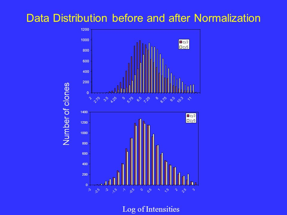 cy3 cy5 Log of Intensities Data Distribution before and after Normalization Number of clones cy3 cy5