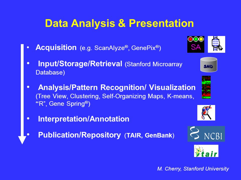 Data Analysis & Presentation Acquisition (e.g.