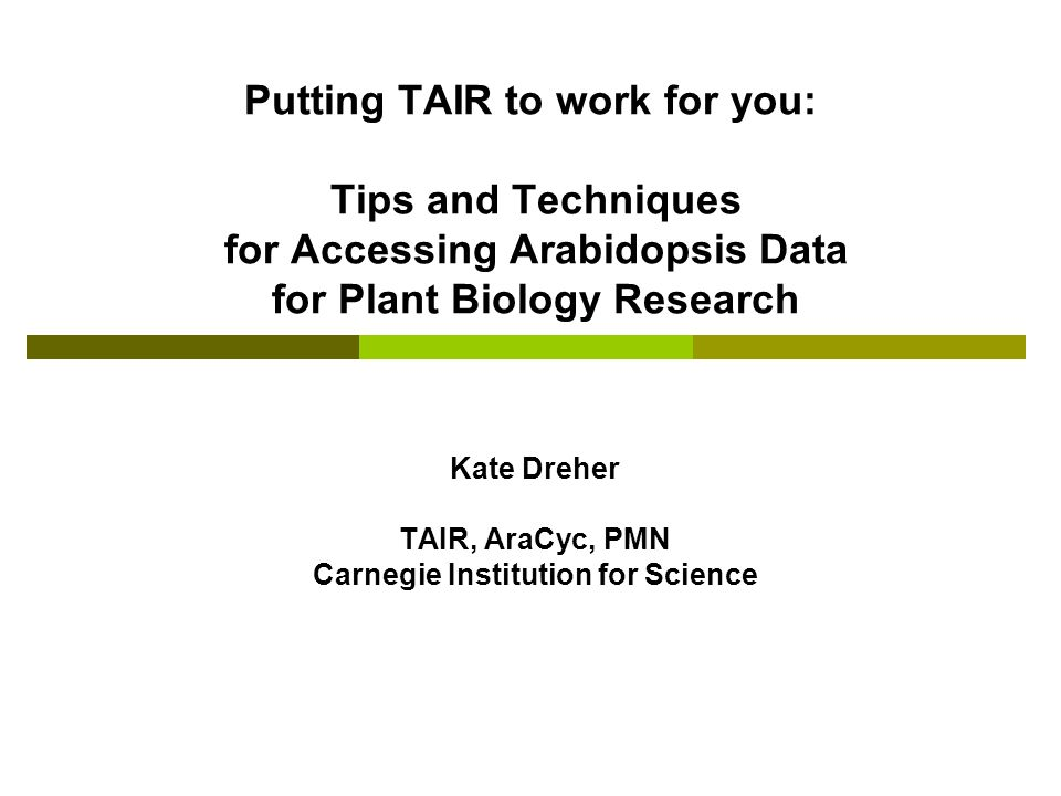 Putting TAIR to work for you: Tips and Techniques for Accessing Arabidopsis Data for Plant Biology Research Kate Dreher TAIR, AraCyc, PMN Carnegie Institution for Science