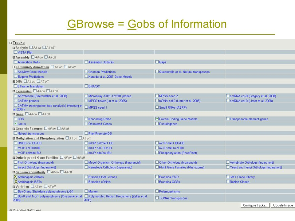 GBrowse = Gobs of Information x x