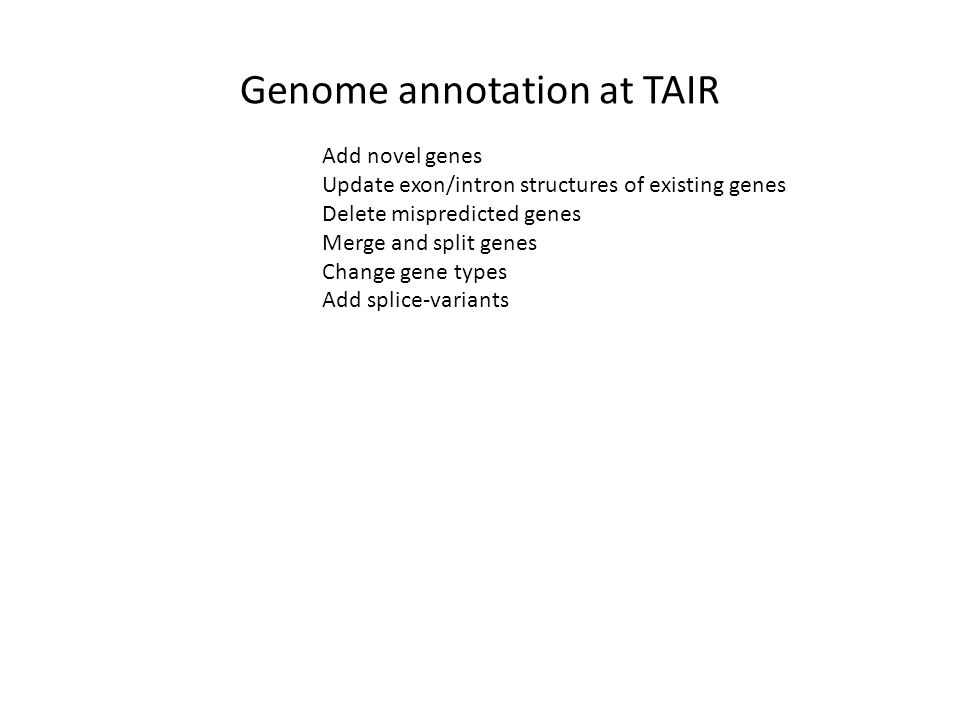 Genome annotation at TAIR Add novel genes Update exon/intron structures of existing genes Delete mispredicted genes Merge and split genes Change gene