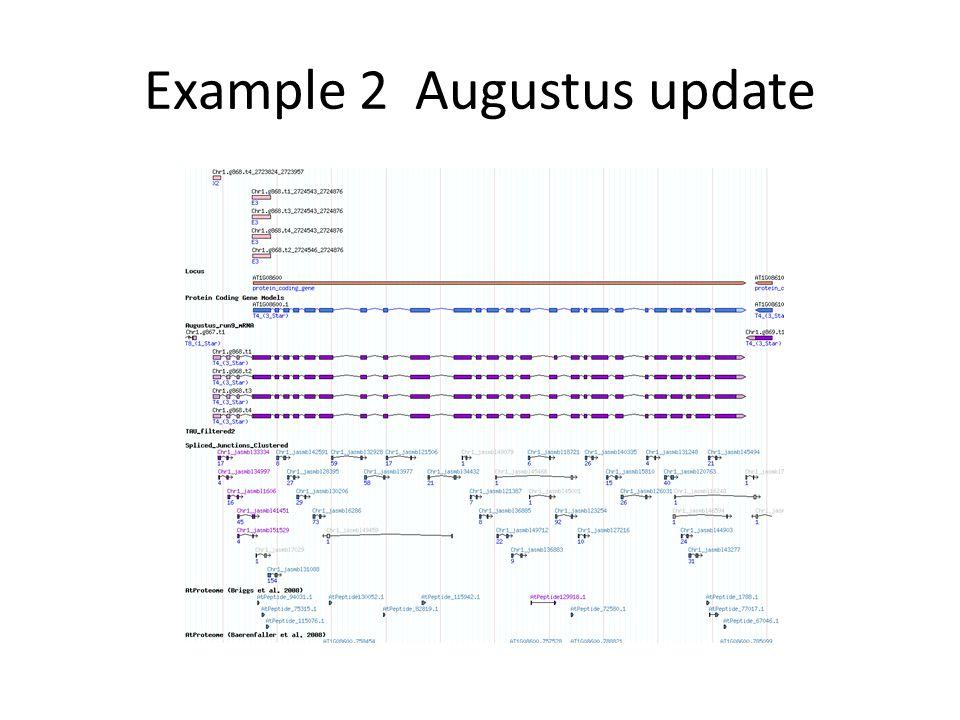 Example 2 Augustus update