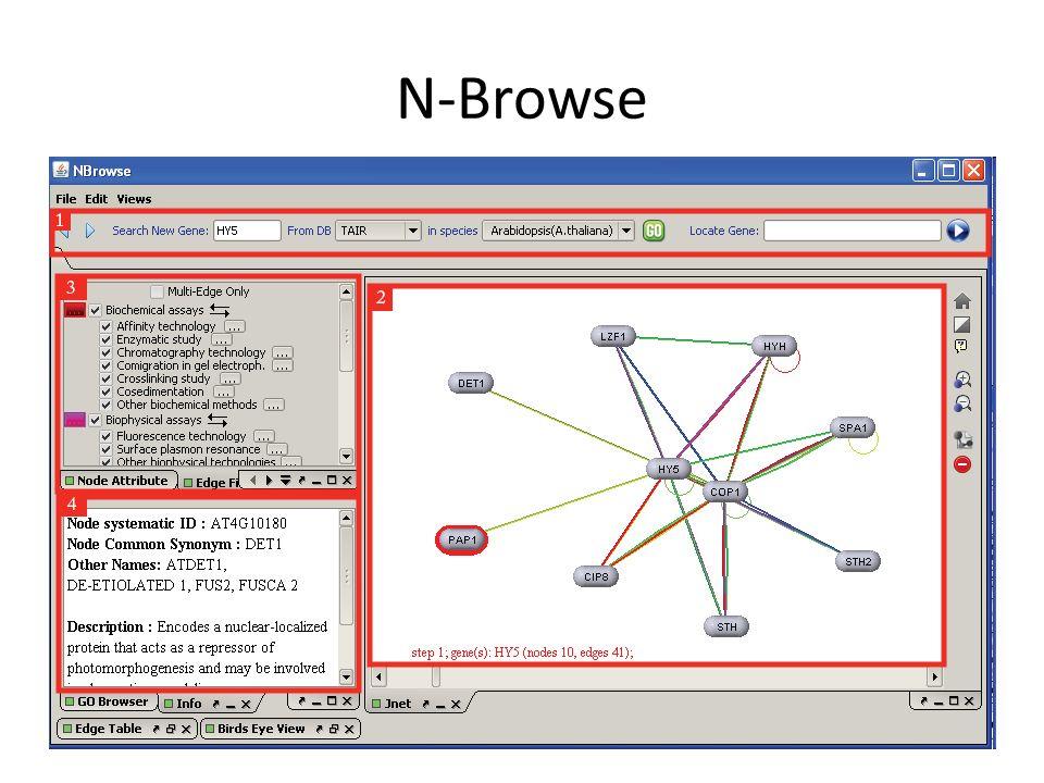 N-Browse